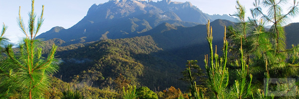 Kinabalu Park Best Tourist Attractions And Places To Visit In Malaysia 2014