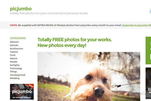 Picjumbo Free High Resolution Photo Images For Your Works